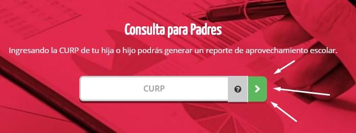 Consulta CURP Yoremia