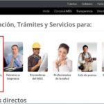 NSS Oaxaca • Solicitud y Consulta