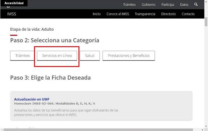 Servicios en línea NSS Oaxaca