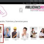 Vigencia IMSS • Servicios Digitales