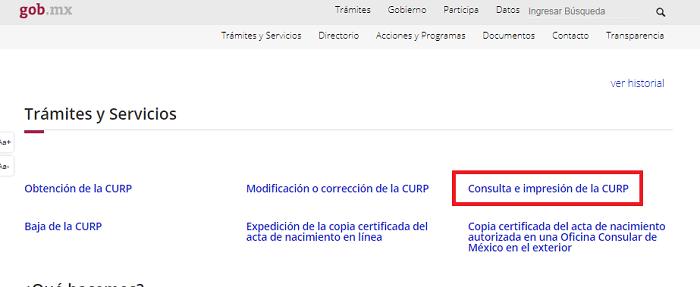 Consulta e imprimir CURP