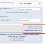 Consulta SPEI • Chequea tus pagos en el sistema